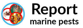 REPORT MARINE PESTS