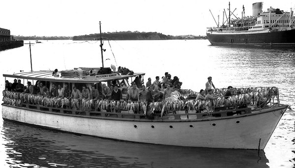 SNA HG 3000 caught in 4 hours 1958 NZ Herald photo